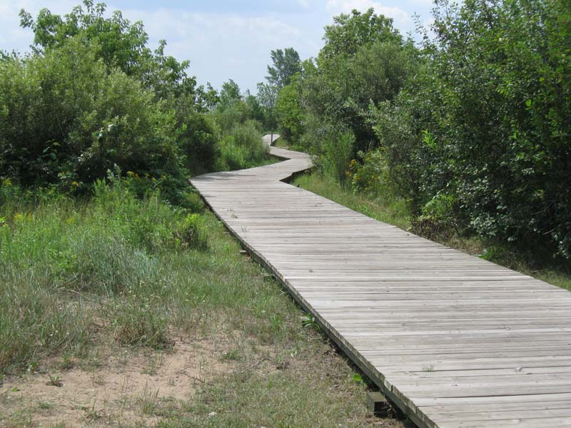 Gladstone Boardwalk